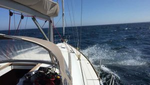 sea-essay-100-800455